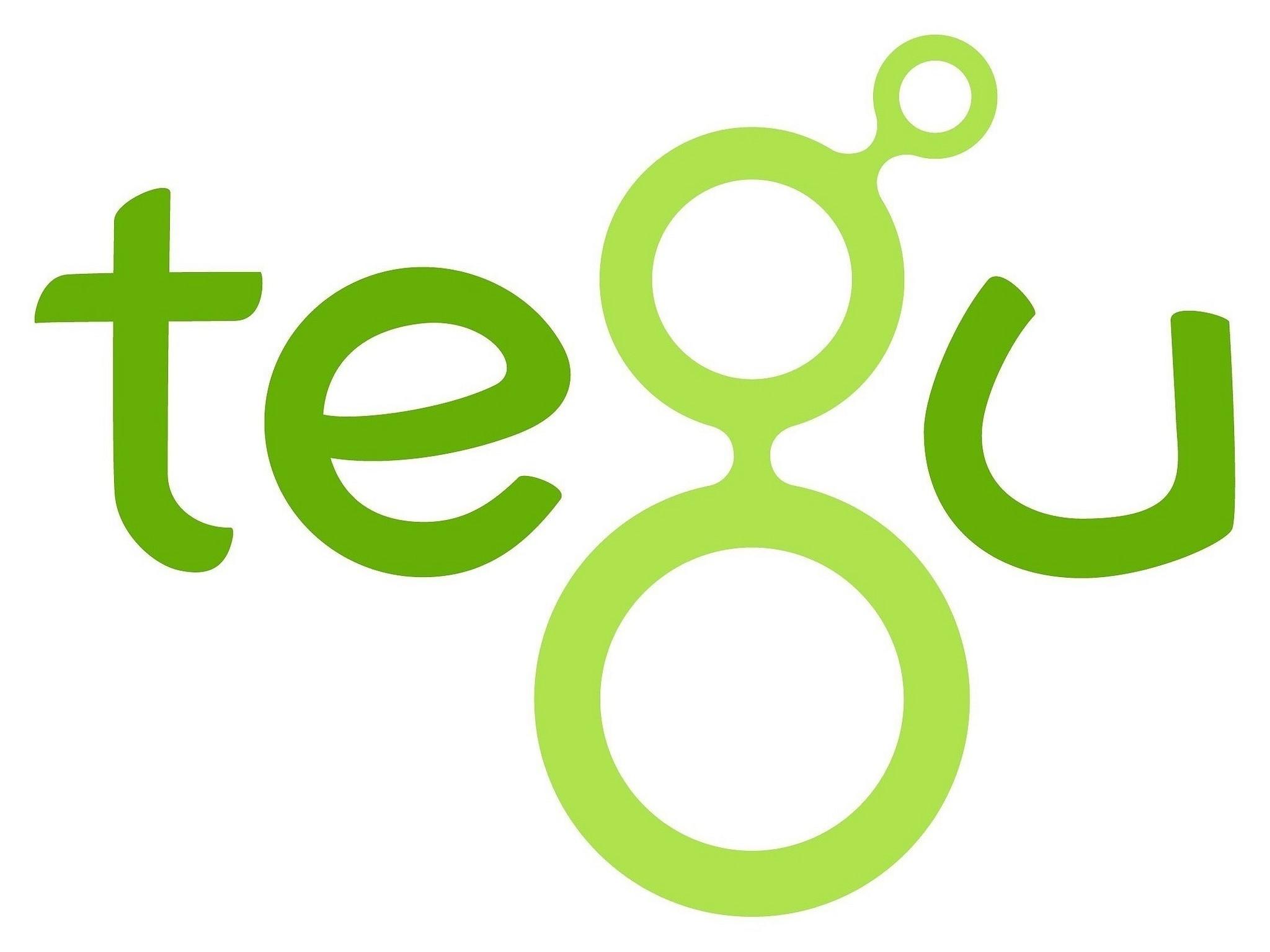 Grafik: Logo der tegu Magnetbausteine aus Holz