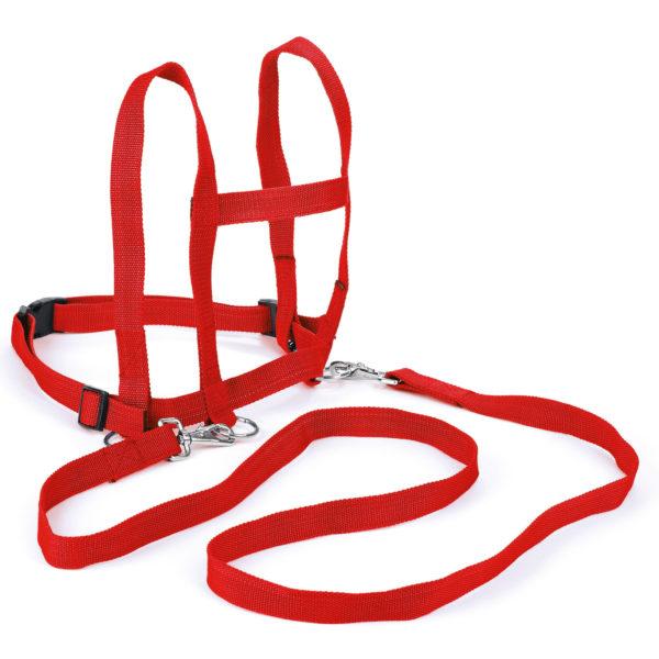 größenverstellbare Laufleine mit Sicherheitsverschluß in rot