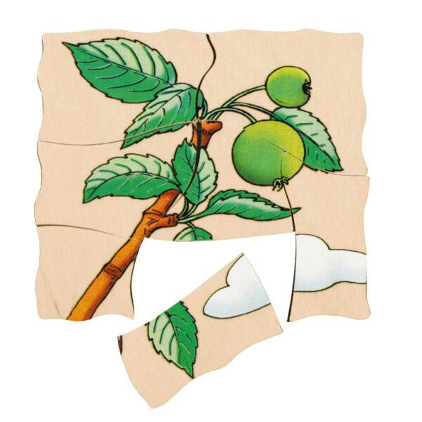 Lagenpuzzle APFEL Holzpuzzle für Kinder