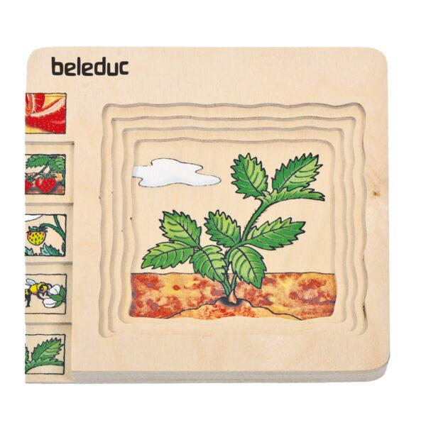 Lagenpuzzle Erdbeere Holzpuzzle für Kinder