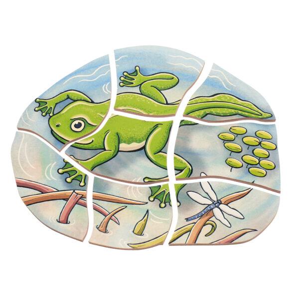 Lagenpuzzle Frosch Holzpuzzle für Kinder